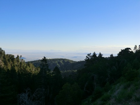 View from Wrightwood